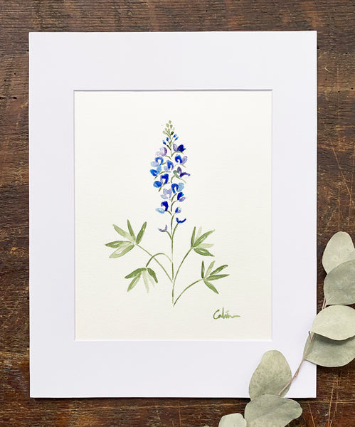 Bluebonnet Original
