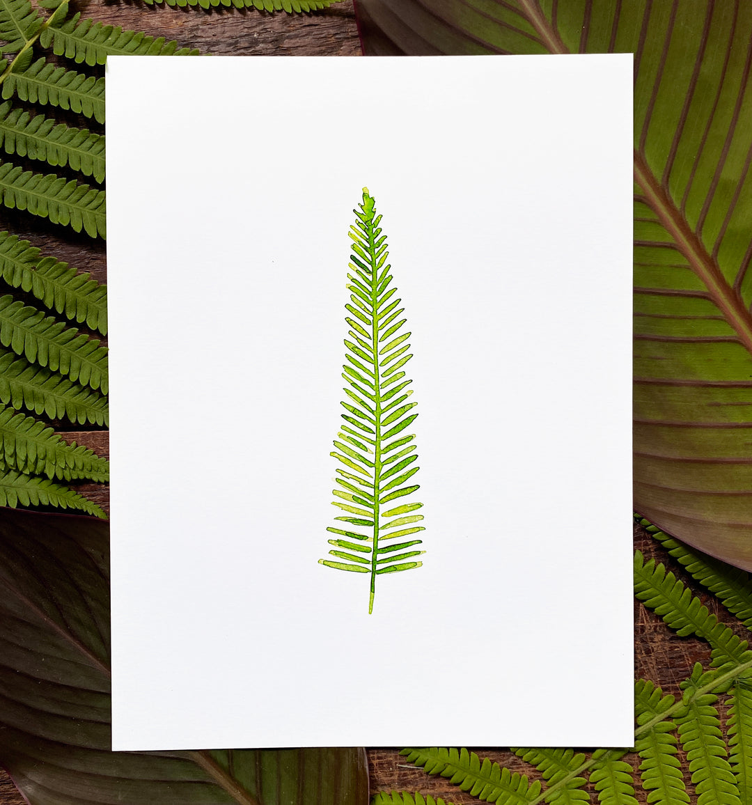 Boston Fern Print