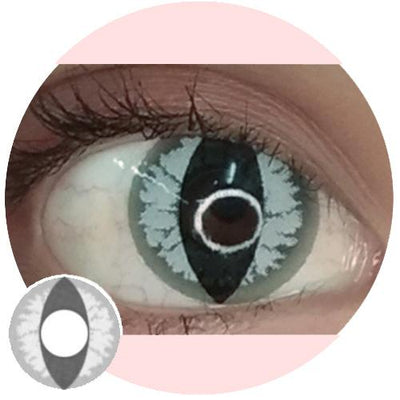 EOS Crazy Lens Grey Dragon Eye-UNIQSO
