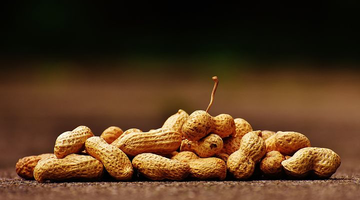 Living With Peanut Allergies - How To Still Enjoy The Foods You Love