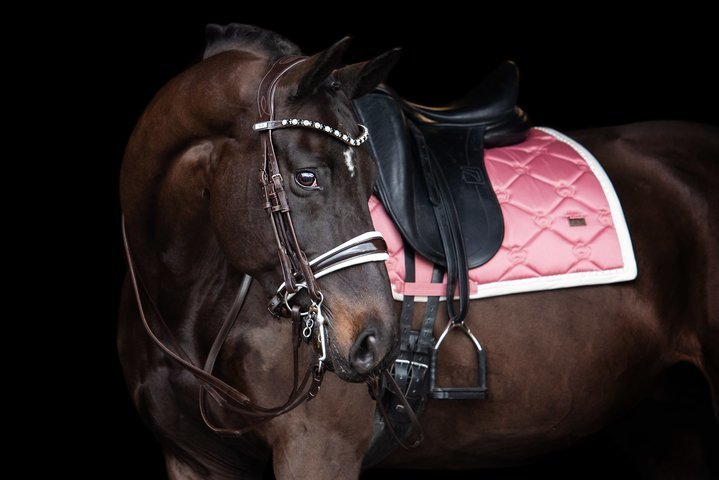 PS of Sweden Double Bridle Patent Noseband with White Padding