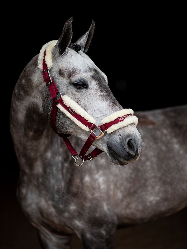 ES Bordeaux Fur Halter and Lead Set