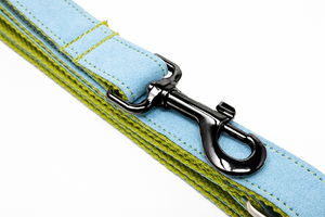 Leash Lime/Blue