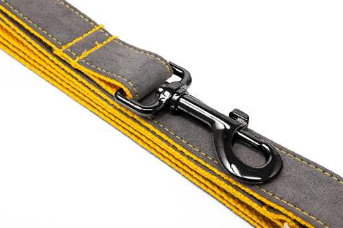 Leash Orange/Grey