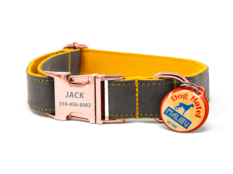 Custom Collar Orange/Grey