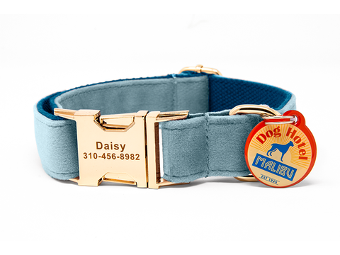 Custom Collar Sky Blue