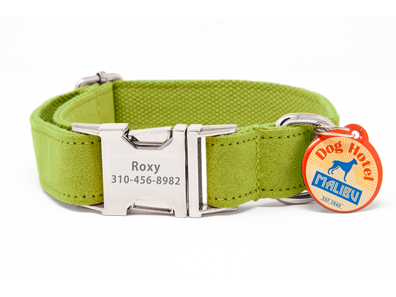 Custom Collar Lime