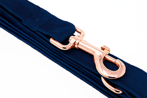 Leash Blue