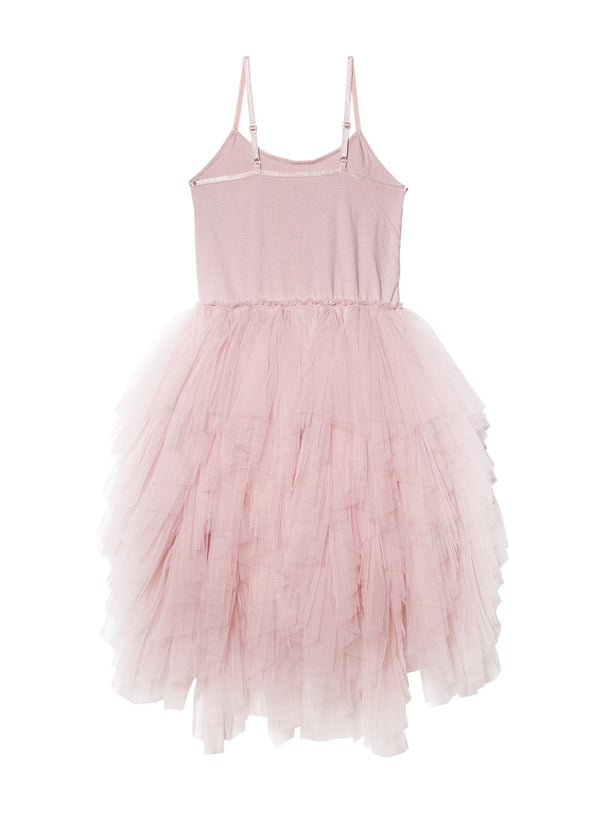 Winters Blossom Tutu Dress