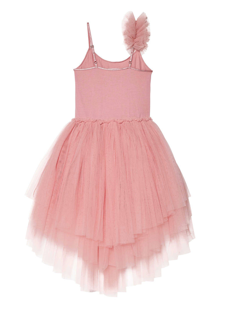 Sweetheart Tutu Dress