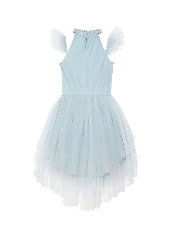 Holly Tutu Dress