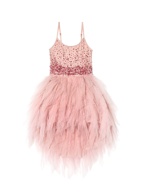 Funfetti Tutu Dress