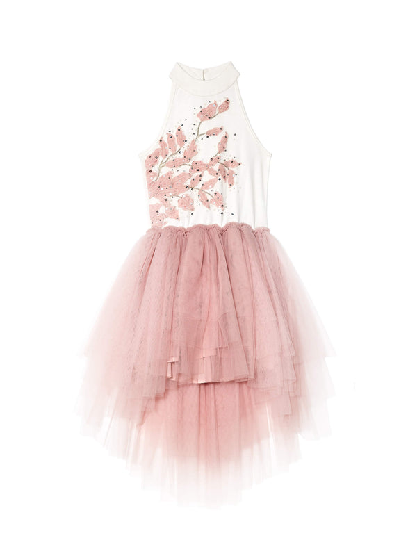 Enchanted Tutu Dress