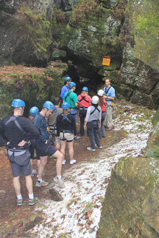 Eco Tour Adventure - Caves and Caverns - Scenic Caves Nature Adventures - Collingwood