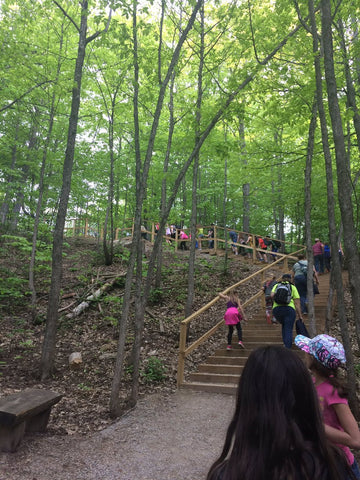 School Groups exploring - Scenic Caves Nature Adventures - Collingwood