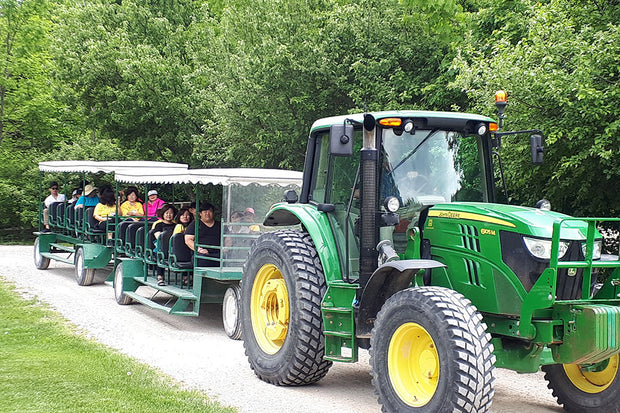 Family Tractor Rides - Scenic Caves Nature Adventures - Collingwood