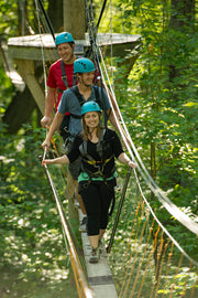Treetop Canopy Walking - Scenic Caves Nature Adventures - Blue Mountains
