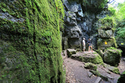 Walking the Caverns - Scenic Caves Nature Adventures - Blue Mountains