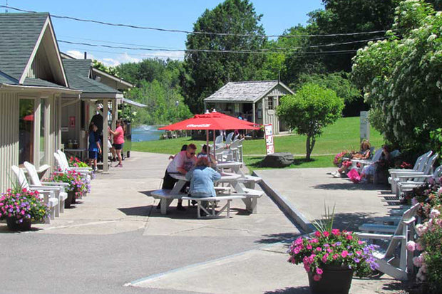 Grab a summer treat at our Snack Bar - Scenic Caves Nature Adventures - Collingwood