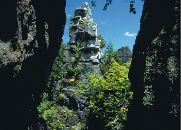 Talking Rock - Scenic Caves Nature Adventures - Blue Mountains
