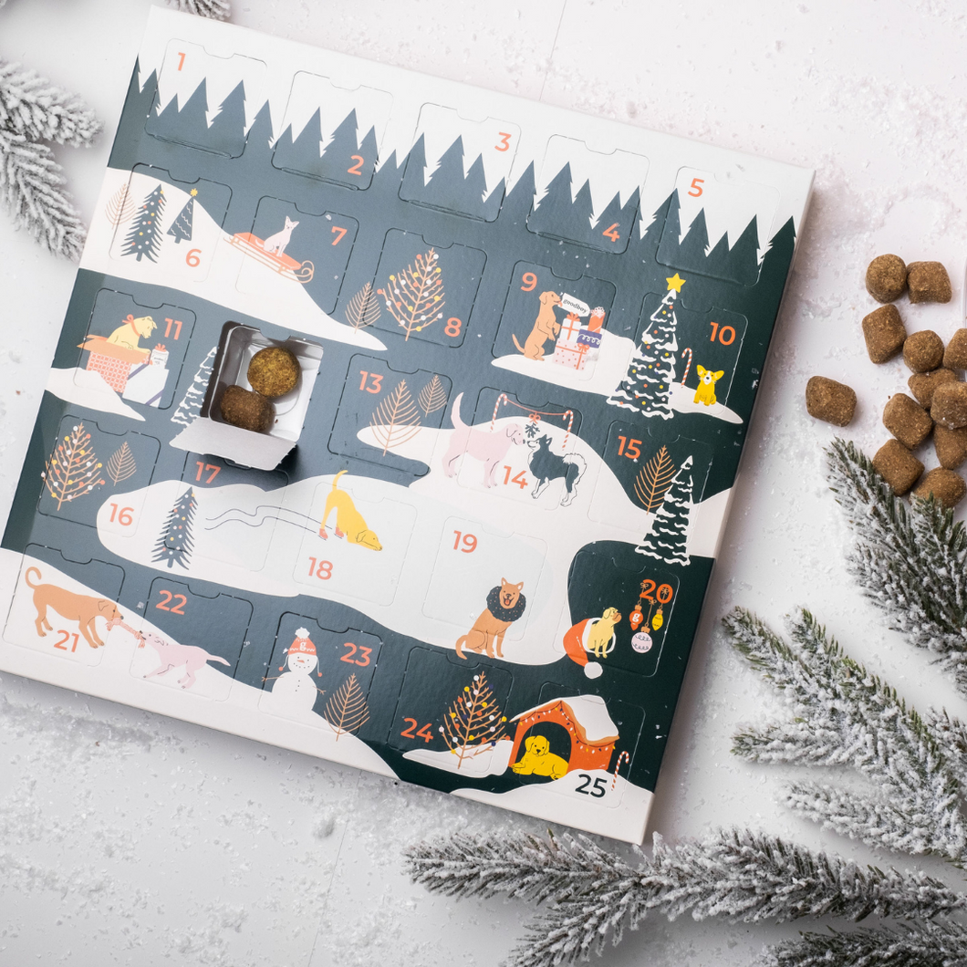 Goodboy Advent Calendar- Complete Care