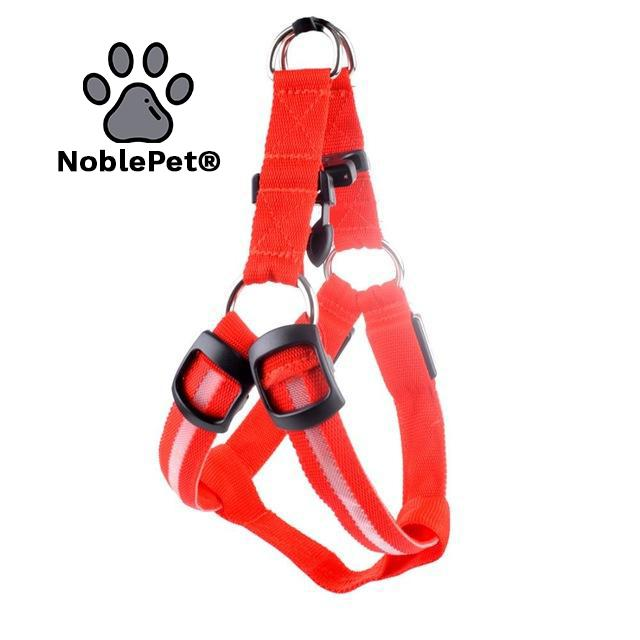 NoblePet® ClearSight PRO | LED Harnas - lieve beestjes