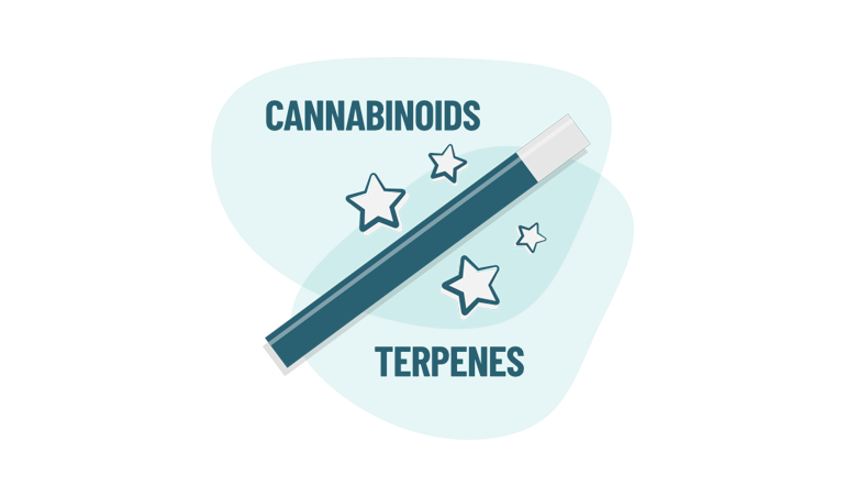 What are cannabis terpenes? 0