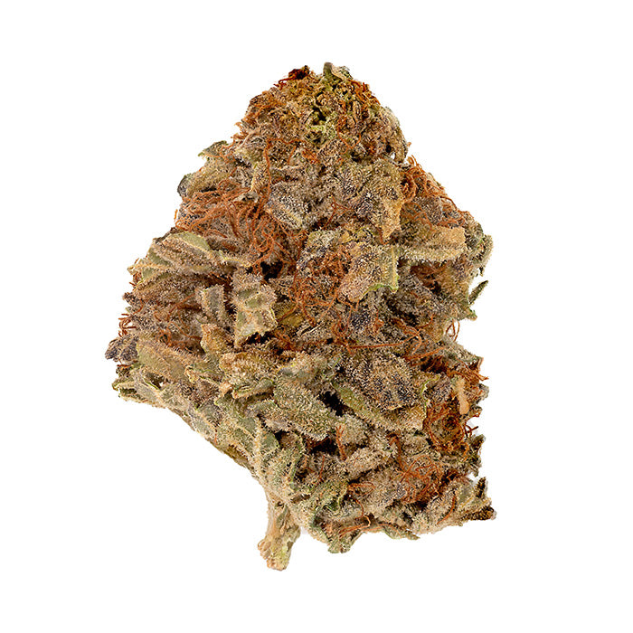 Purple Kush Dried Flower