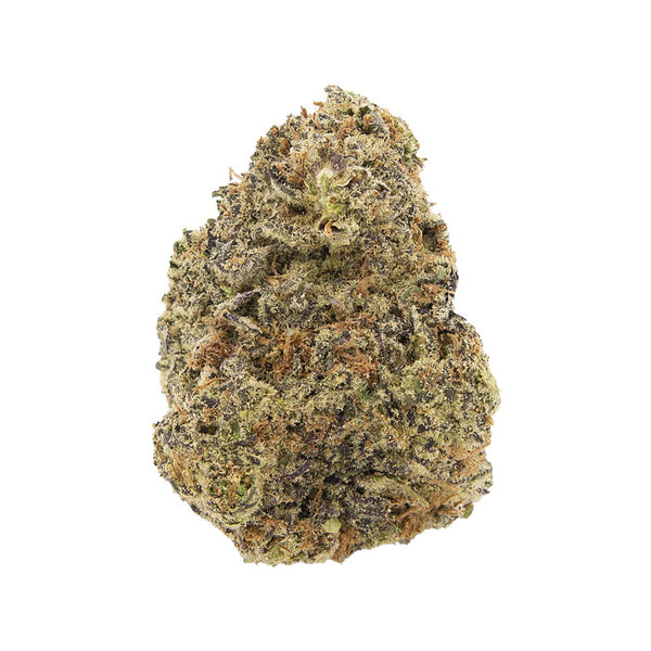 Sour Cookies Dried Flower
