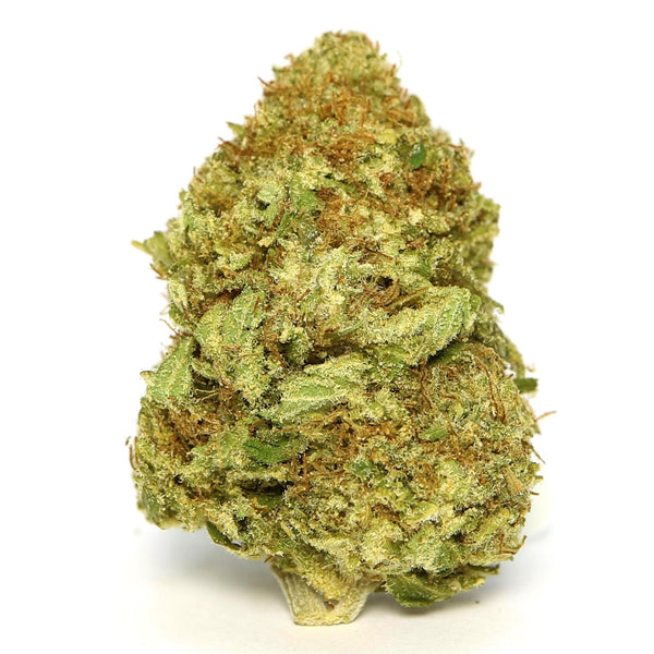 MMG - Sensi Star Dried Cannabis Flower - 7g - 0