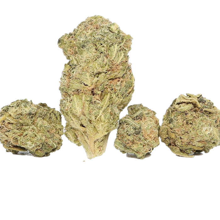 San Fernando Valley Dried Cannabis Flower