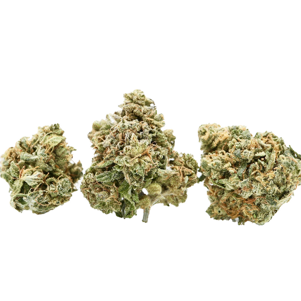 Compassion Lime Dried Cannabis Flower 1