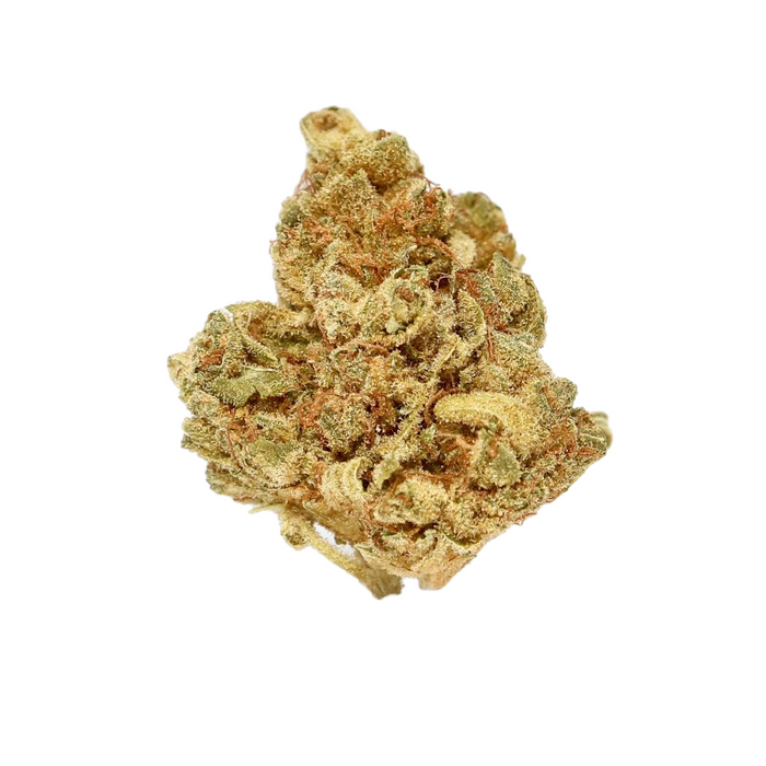 Odyssea (Ghost Train Haze) Dried Flower