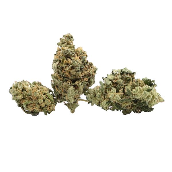 Ultimate 2 Dried Cannabis Flower 1