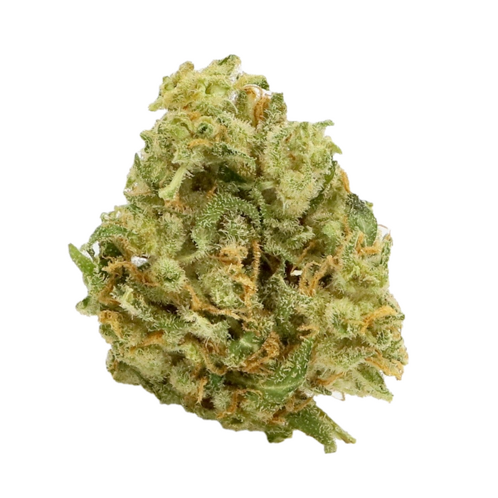 Orange Bud Dried Cannabis Flower