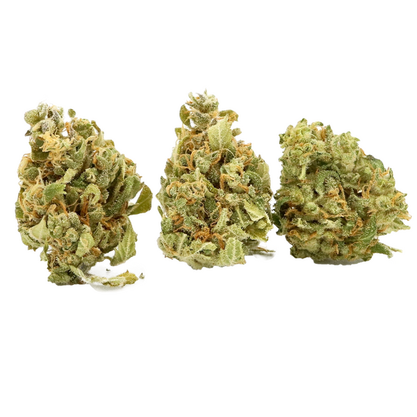 Apothecary Botanicals - 1 Ounce of Orange Bud - 8x3.5g - 1