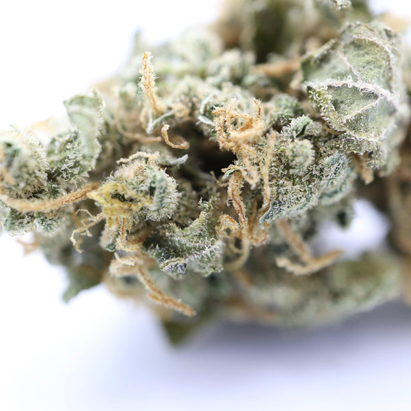 Ultimate 2 Dried Cannabis Flower 2