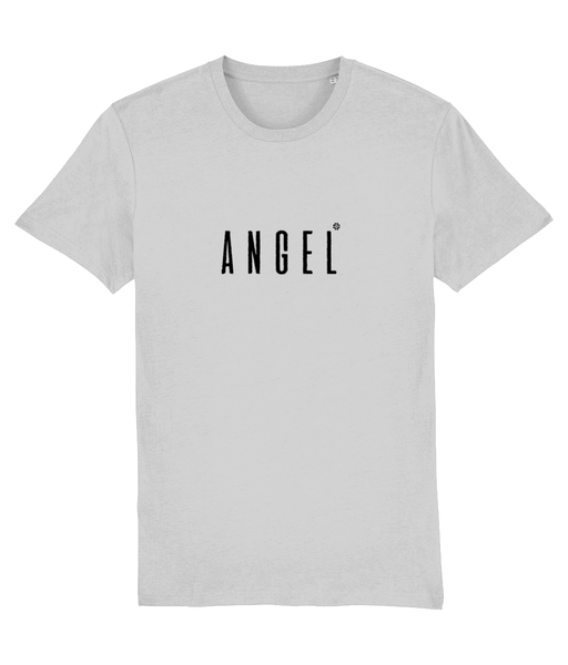 Adult unisex Grey t-shirt with angel slogan printed in Black