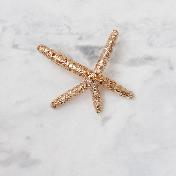 Broche Shiny Star