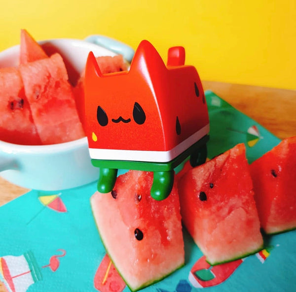 Watermelon Box Cat by Rato Kim