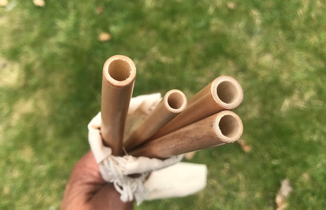 Bamboo Straws in cotton Bag -4 in a pack