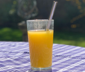 Stainless Steel Straw Reusable - Smoothie