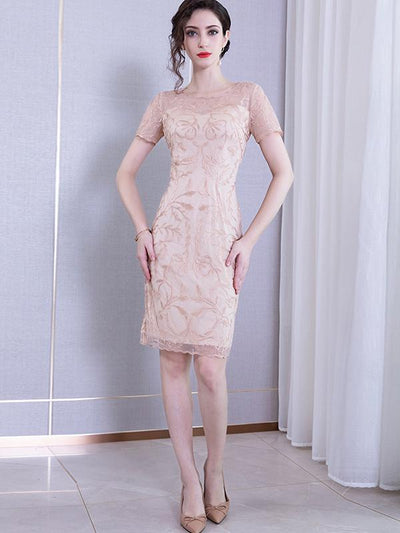 Chic Mesh Embroidery Stitching Bodycon Casual Dresses