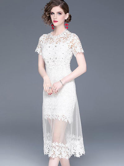Exquisite Hollow Out Perspective Lace Skater Casual Dresses