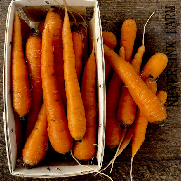 Carrots - without tops