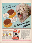 Vintage 1944 Pard Dehydrated Swift's Dog Food Ad