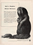 Vintage 1941 Bell Telephone System Long Distance Gopher Ad