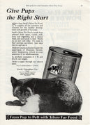 Vintage 1931 Swift's Silver Fur Fox Food Ad