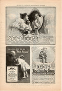 1899 Sozodont, Dents Toothache Gum, & Ideal Bicycle Ad