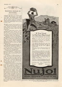 Antique 1917 Nujol Medicine For Constipation Ad